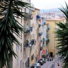 Nizza-30-1-2010-Jan10 700